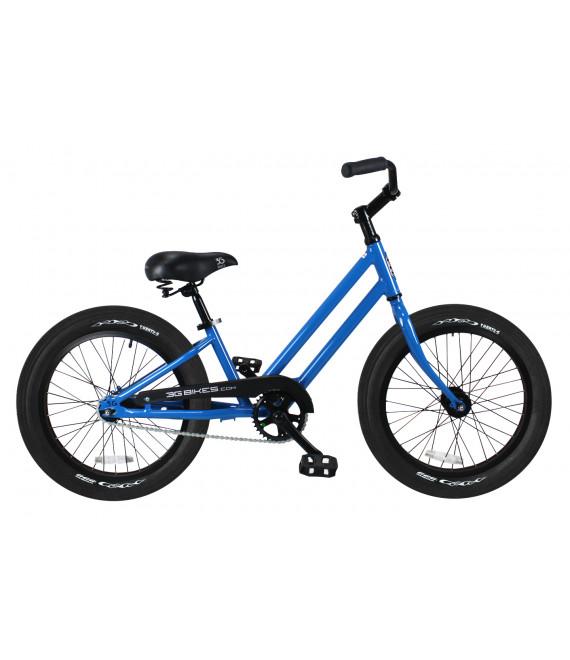 20 in. Kids Bike