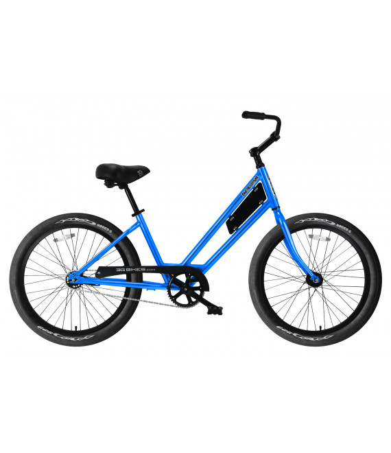 24 inch bike rental-2 models